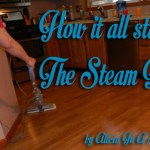 How My Journey Started- The Steam Mop