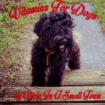 Dog Days: Vitamins For Dogs