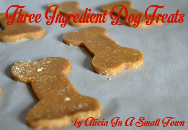 three ingredient dog treats