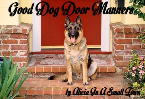 Good Dog Door Manners