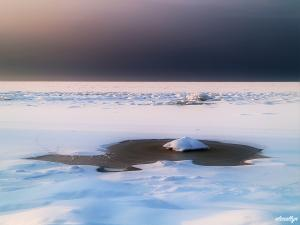 Icescape IV