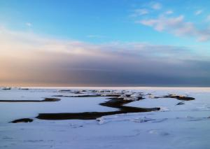 Icescape V