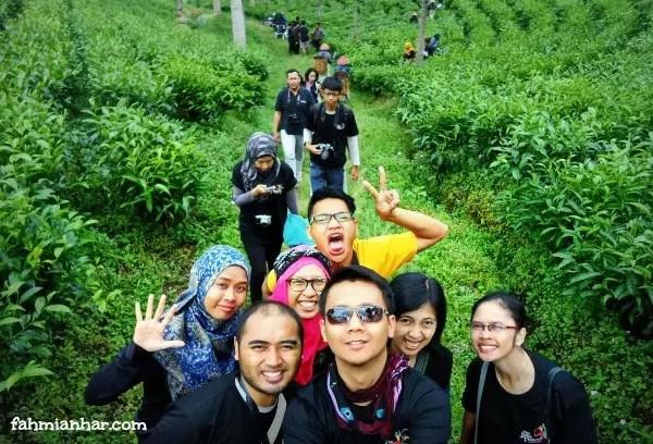 Travel-Blogger-FamTripJateng-di-Teh-Tambi-Wonosobo