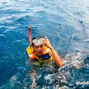 Alid Snorkeling Gili Trawangan 3