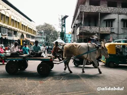 Bangalore dalam Sehari-6