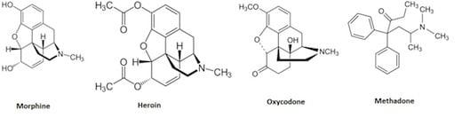 Opioid structures