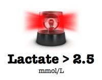 LactateMore2.5