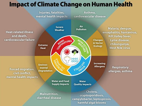 climate change on human health CDC graphic