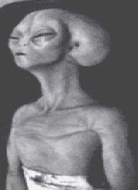 alien38.jpeg