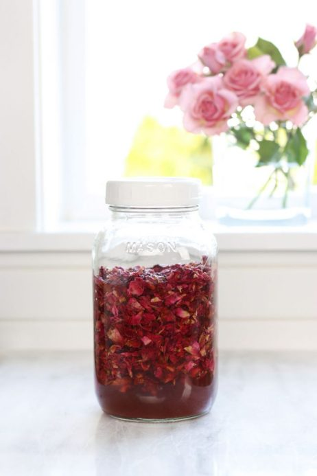 Glass jar infusing a batch of rose petal vinegar