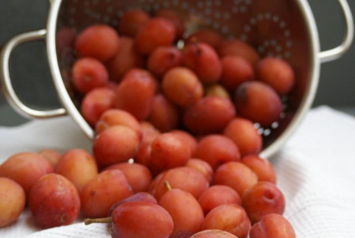 Beautiful blush plums
