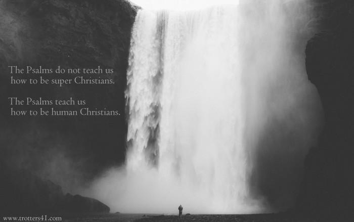 psalms.t41a