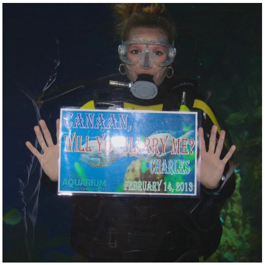 Charles Canaan Marriage Proposal Ripley's Aquarium