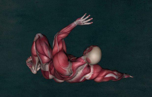 anatomi baĞiŞiklik sİstemİnİ gÜÇlendİrmek İÇİn turbo kokteyl-jason vale'den bİtkİsel Önerİler Bağışıklı Sistemini Güçlendirmek İçin Turbo Kokteyl anatomy 2148324 1920