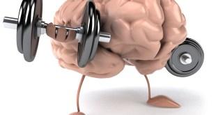 hafıza teknikleri sinan yılmaz Hafıza Teknikleri Hafıza Teknikleri hafiza gelistirme