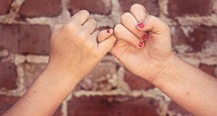 bir dostluk hikayesi Bir Dostluk Hikayesi dostluk