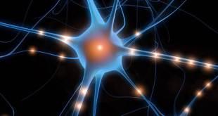 kuantum düşünce tekniği kitap Negatif Enerji Negatif Enerjiyi Değiştirme Teknikleri kuantum dusunce teknigi nasil uygulanir