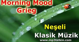 Morning Mood Grieg Morning Mood Grieg Neseli