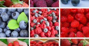 Frutas depurativas y antioxidantes fresas frambuesas arándanos