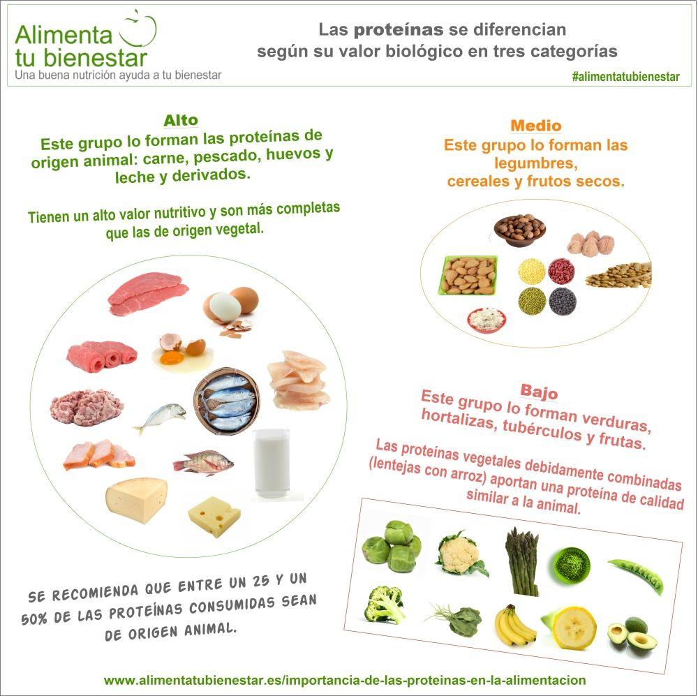 Infografía Proteínas en la alimentación
