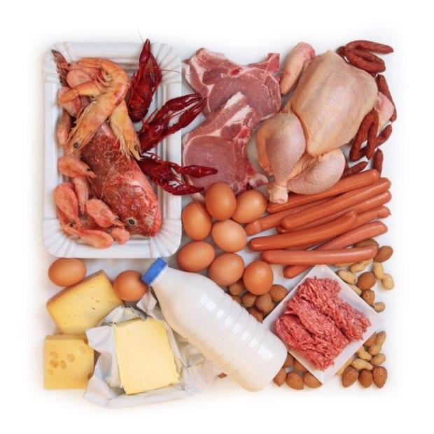 la importancia de las proteínas en la alimentación