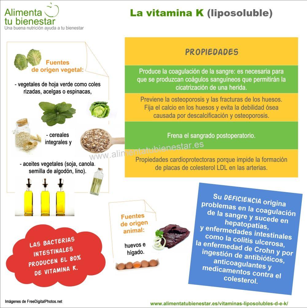 Vitaminas liposolubles - Infografia vitamina K