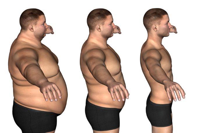 dieta para adelgazar personas sedentarias