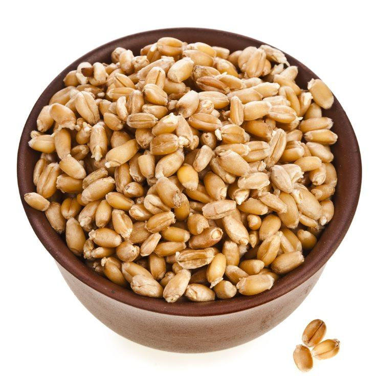 ¿Cuáles son los mejores cereales integrales para desayunar?