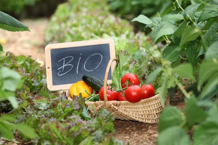 Alimentos ecológicos y contaminación química de los alimentos