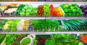 alimentos de calidad dieta equilibrada