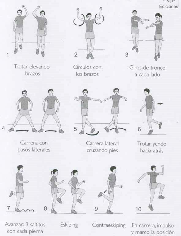 Tabla estiramientos todo el cuerpo