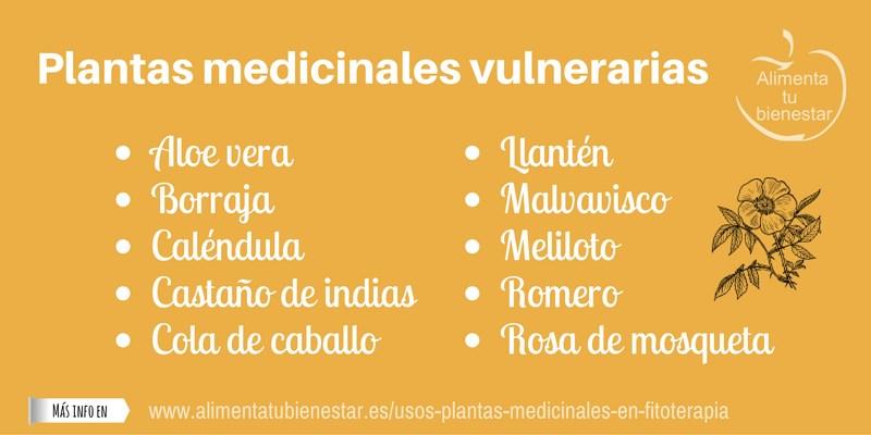 Plantas medicinales vulnerarias