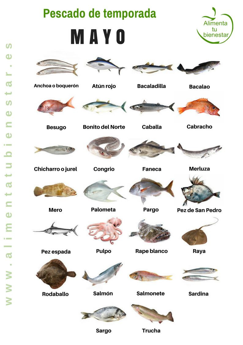 Pescado De Temporada Descarga El Calendario Para Todo El Año