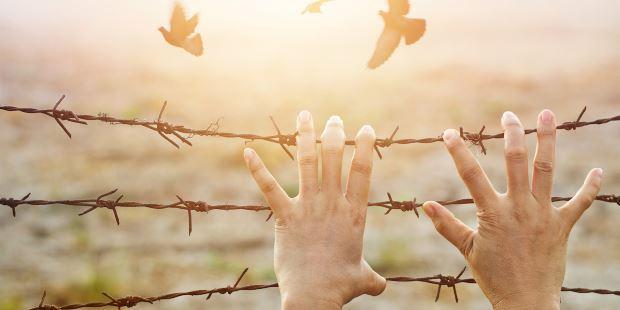 bienestar holístico y comunión