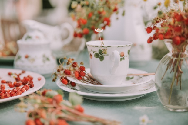 diferencia entre tisana, infusión y té