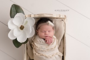 Plano-Newborn-Photographer-Baby-Magnolia-1