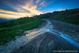 04. Natura - Alin Popescu
