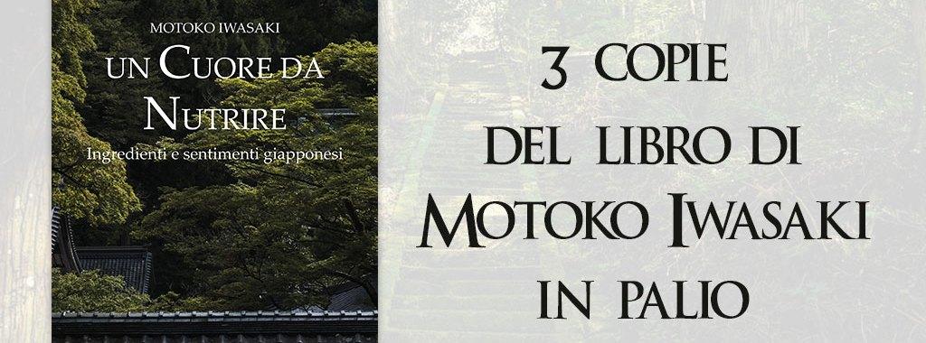 Concorso Motoko