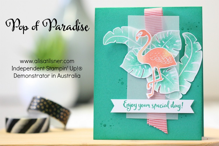 Stampin Up Pop of Paradise