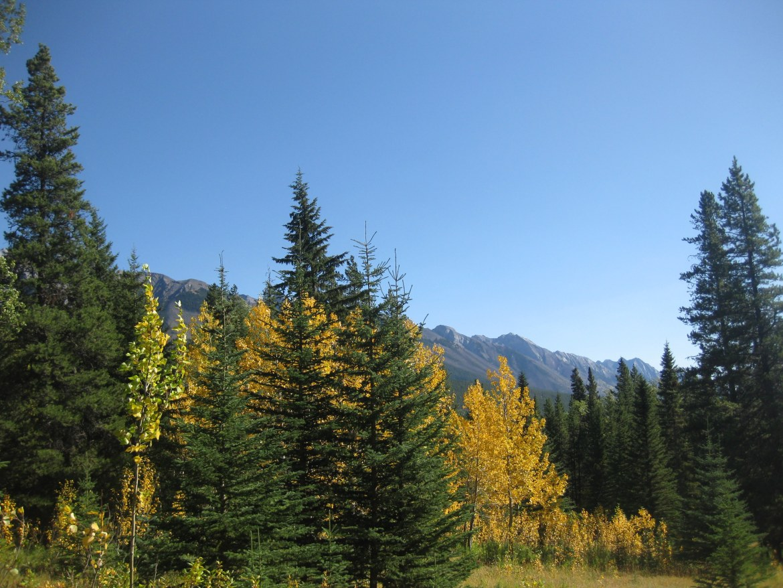 Banff Day 1 (47)