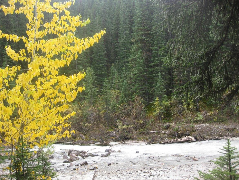 Banff Day 3 (117)