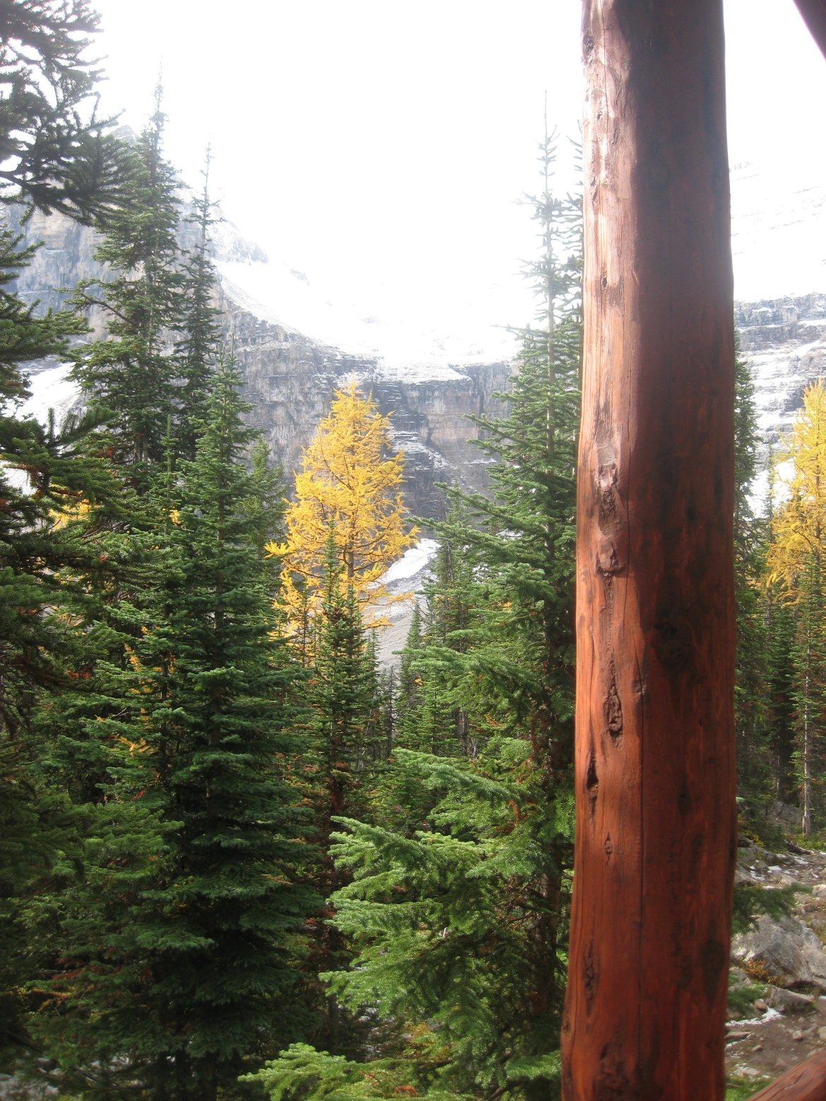 Banff Day 3 (95)