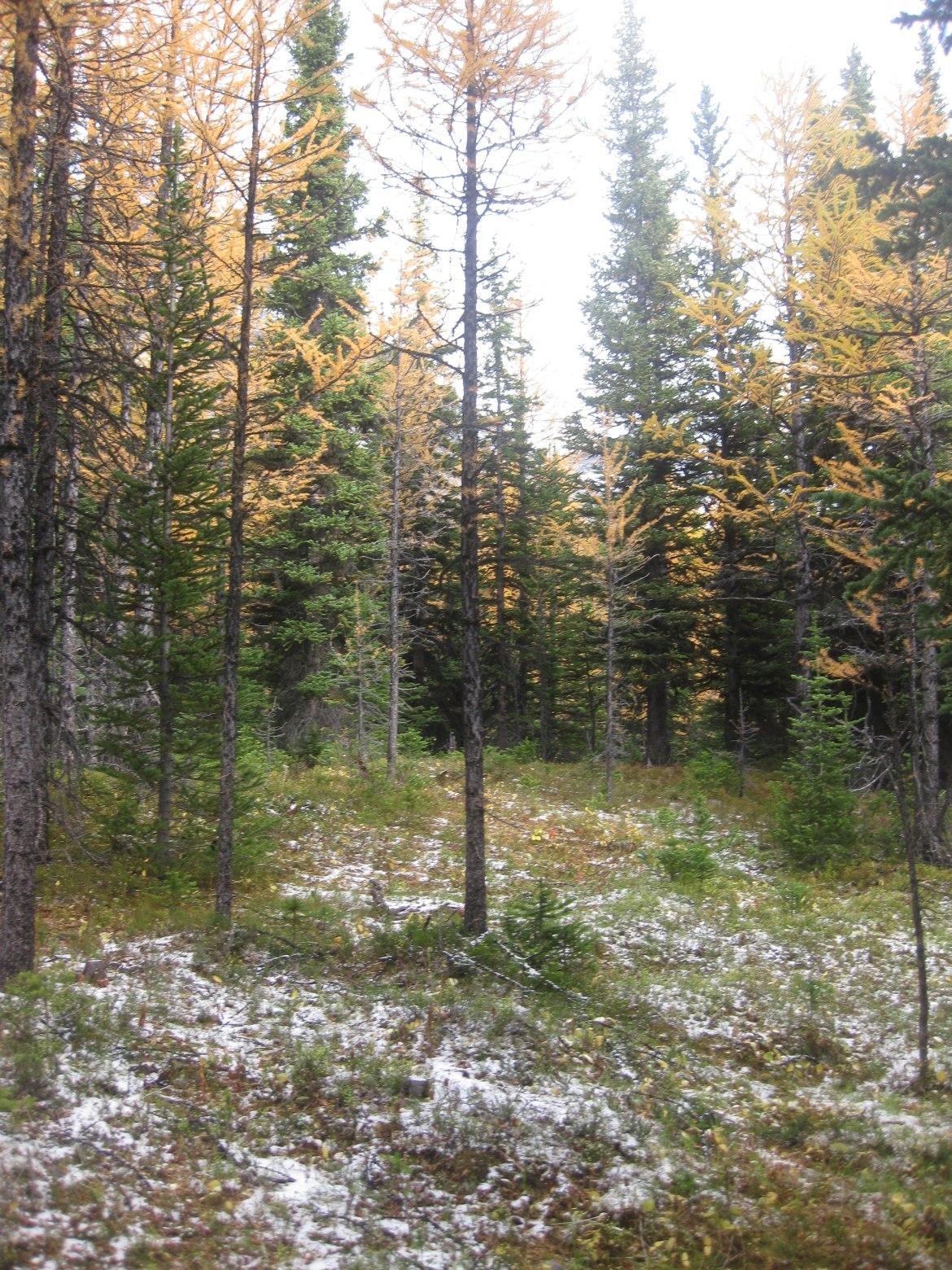 Banff Day 5 (19)