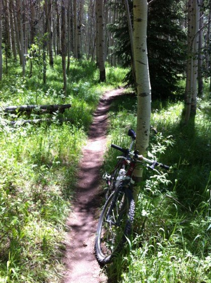"""aspen trees and mountain bike"" ""mountain biking trail"" ""colorado trail"""