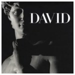 Michaelangelo's David, Florence, Italy