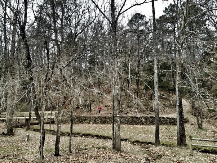 Tollantusky Trail, Hiking in Arkansas, Arkansas Hiking Trails, Exploring Arkansas, Outside with kids
