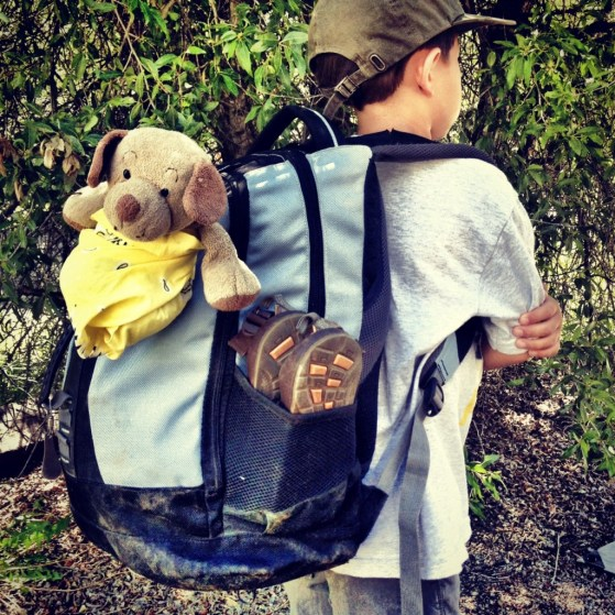 Aspen To Crested Butte, Backpacking, Hking With Kids, Colorado