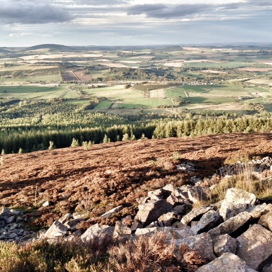 Hiking In Scotland, Bennachie in October