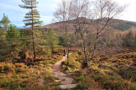 Bennachie in January, #48walks, Scotland, Highlands