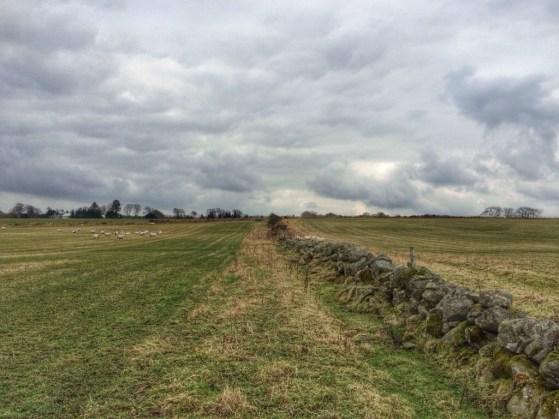 Bucksburn, Scotland, #48walks, Aberdeen, Aberdeenshire